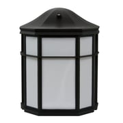 EfficientLighting 1 Light Outdoor Wall Lantern; Black