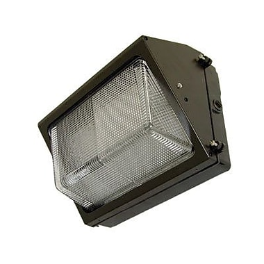Barron Lighting 9.29'' One Light Outdoor Compact Fluorescent Wall Light in Architectural Bronze