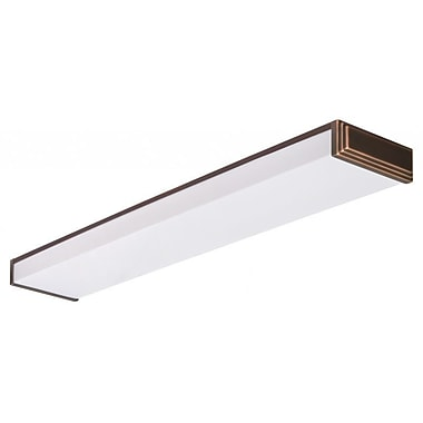 Lithonia Lighting Riser Decorative Linear 2 Light Flush Mount