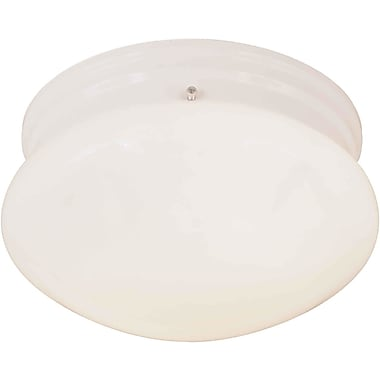 Forte Lighting 2 Light Opal Flush Mount; White