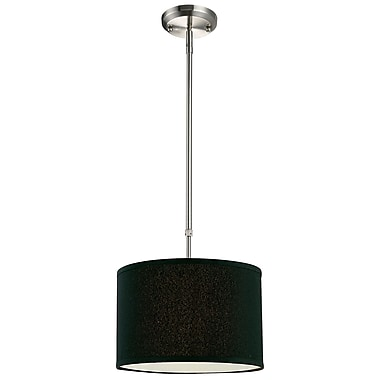 Z-Lite Albion 1-Light Drum Foyer Pendant; Black
