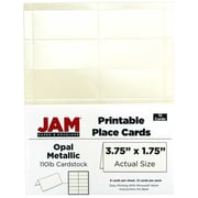 "JAM Paper Place Cards, Off-White, Metallic, 3.75"" x 1.75"", 12/Pack (225928572)"