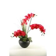 D & W Silks Fuchsia Orchids in Ceramic Planter