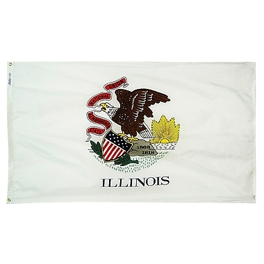Annin Flagmakers Illinois State Flag; 4' x 6'