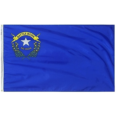 Annin Flagmakers Nevada State Flag; 4' x 6'