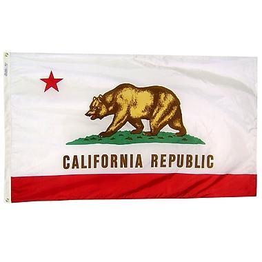 Annin Flagmakers California State Flag; 4' x 6'