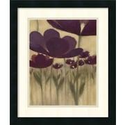 Amanti Art 'Summer Bloom II' by Vittorio Maria Framed Painting Print