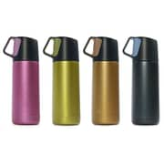 Carteret Collections Double Wall Stainless Steel Thermos, Assorted Colors