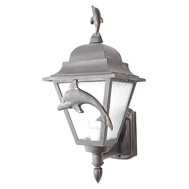 Melissa Americana 1 Light Outdoor Sconce; Aged Silver