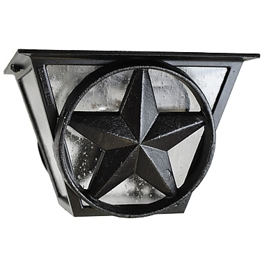 Melissa Americana 2-Light Flush Mount; Patina Bronze