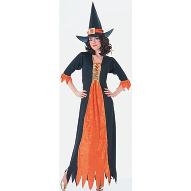 Adult Gothic Witch Costume, Standard