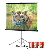 "Draper ® 70"" x 70"" Consul Portable Tripod Projection Screen, Matte White (216004B)"