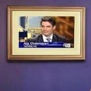 LCD Fashion Medium Universal TV Frame; Gold