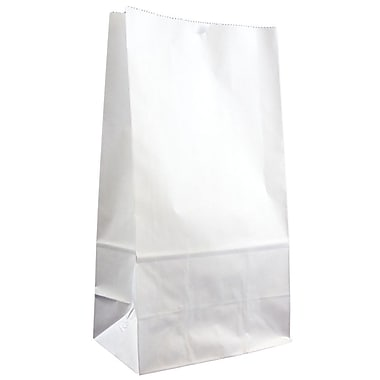 JAM Paper® Kraft Lunch Bags, Large, 6 x 11 x 3.75, White, 25/pack (692KRWH)