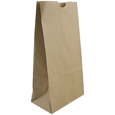 JAM Paper® Kraft Lunch Bags, Medium, 5 x 9.75 x 3, Brown Kraft Recycled, 25/pack (691KRBR)
