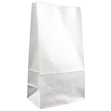 JAM Paper® Kraft Lunch Bags, Small, 4.125 x 8 x 2.25, White, 25/pack (690KRWH)