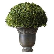 Uttermost Preserved Polyresin Globe Planter