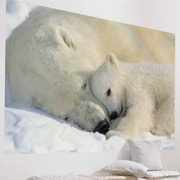 Brewster Home Fashions Komar Polar Bears 1-Panel Wall Mural