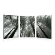 3 Panel Photo Looking Up 3 Piece Photographic Print on Vinyl Set; 24'' H x 72'' W x 1'' D