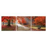 3 Panel Photo Park Bench 3 Piece Photographic Print on Canvas Set; 28'' H x 84'' W x 1'' D