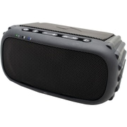 Ecoxgear Bluetooth® Portable Audio System (black)