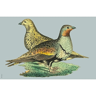 Belle Banquet Partridges Placemat (Set of 6)