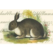Belle Banquet Alpha Rabbit Placemat (Set of 6)