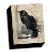 Picture it on Canvas Etching on Paper Raven Sketch Graphic Art on Wrapped Canvas