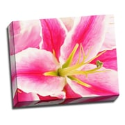 Picture it on Canvas Flowers Pink Lilly Flower Digital Photographic Print on Wrapped Canvas