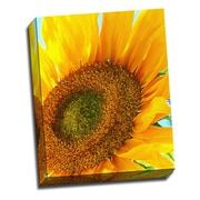 Picture it on Canvas Flowers Sunflower Flower Digital Photographic Print on Wrapped Canvas