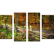 FramedCanvasArt 'Fall Forest 2' by Elena Elisseeva 4 Piece Photographic Print on Wrapped Canvas Set