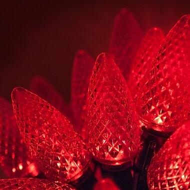 Wintergreen Lighting 25 Light C9 LED Christmas Lights; Red