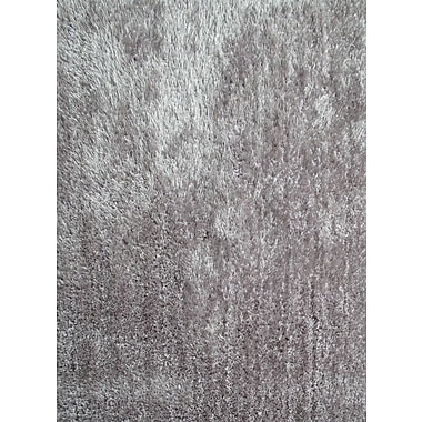Rug Factory Plus Amore Shag Silver Area Rug; 5' x 7'