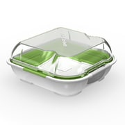Contain This!, LLC. Perfect Sandwich Container; Green / White