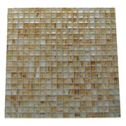 Abolos Amber 0.63'' x 0.63'' Glass Mosaic Tile in Miele