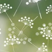 Odhams Press Dandelion Privacy Window Film; 48'' H x 36'' W