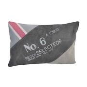 Decorative Leather Books, LLC No. 6 Upcycled Lumbar Pillow