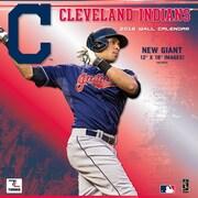 Cleveland Indians 2016 12X12 Team Wall Calendar