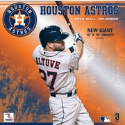 Houston Astros  2016 12X12 Team Wall Calendar
