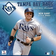 Tampa Bay Rays 2016 12X12 Team Wall Calendar