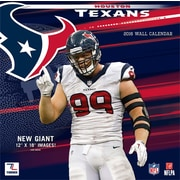 Houston Texans 2016 12X12 Team Wall Calendar