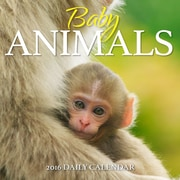 Baby Animals 2016 Photo Daily Boxed