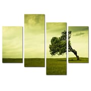 Elementem Photography In The Field 4 Piece Painting Print on Canvas Set