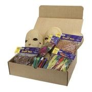 Chenille Kraft Paper Mache Masks Activities Box