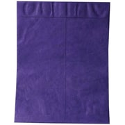 "JAM Paper Peel and Seal Heavy-Duty Tyvek Envelope, 10"" x 13"", Purple, 10/Pack (v021382b)"
