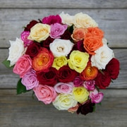 The Bouqs Company Carnival Sweetheart Roses