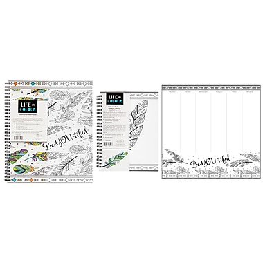 Pine Ridge Art Inc. Life in Colour Stationery Collection, Feather Design, 3/Pack
