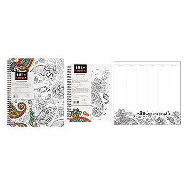 Pine Ridge Art Inc. Life in Colour Stationery Collection, Paisley Design, 3/Pack
