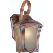 Forte Lighting 1 Light Outdoor Wall Lantern; Large / Rustic Sienna