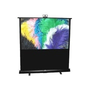 Draper® Piper 230166 Manual Pull Up Portable Projection Screen, 77""